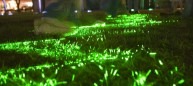 2 kids playing in Emerald Laser Lawn.