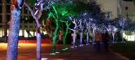"""LUMINOUS CONJUNCTIONS A 2-part interactive project utilizing """"security lighting funds"""". A ring of trees and walkway surrounds the central lawn. As a person walks by an individual tree it changes color from white to green, then slowly fades back to white. Riding a bike around the park can quickly sequentially trigger the trees. As we move through the park, we affect the space around us and leave a temporary mark. Photo: Bill Sanders"""